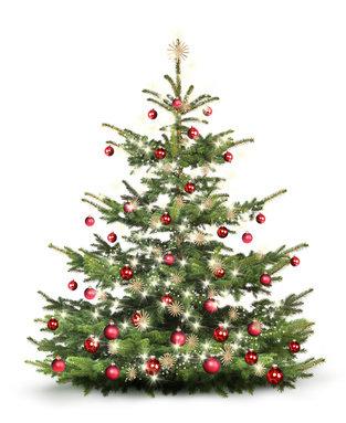 weihnachtsbaum-1x.jpg